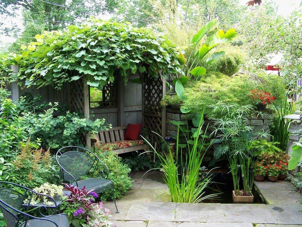 Cómo-decorar-un-patio-plantas-flores-árboles