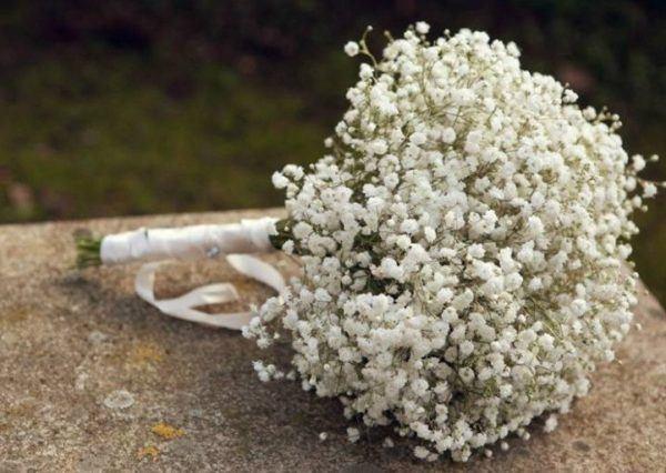 hacer-ramos-de-flores-frescas-san-valentin-paniculata