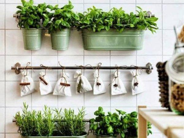 formas-de-decorar-con-plantas-maceteros-latón