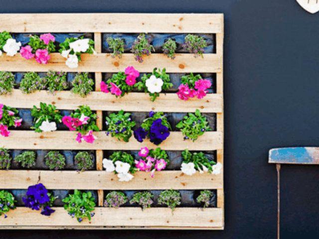 Formas de decorar con plantas palets flores for Formas para decorar una casa