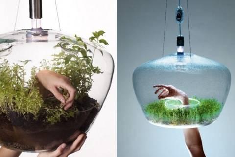 formas-de-decorar-la-casa-con-plantas-de-interior-lampara