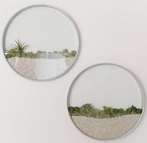 formas-de-decorar-la-casa-con-plantas-de-interior-marco
