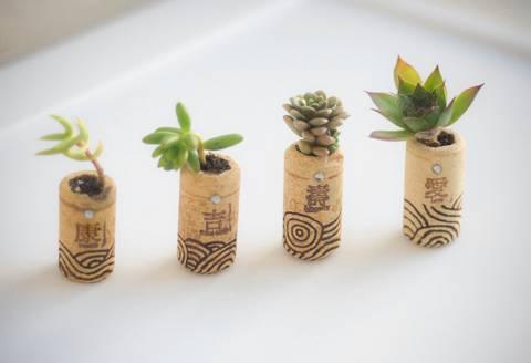 formas-de-decorar-la-casa-con-plantas-de-interior-tapones-de-corcho