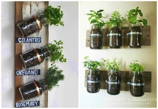 formas-de-decorar-la-casa-con-plantas-de-interior-especias