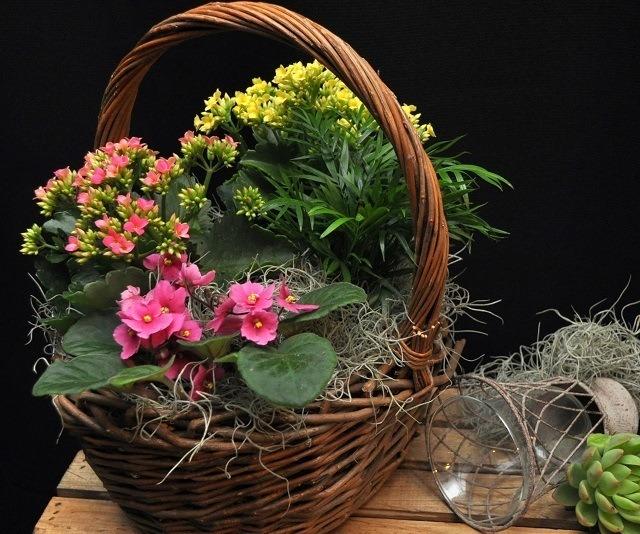 27 bonitas formas de decorar la casa con plantas de interior - Decorar cestas de mimbre paso a paso ...