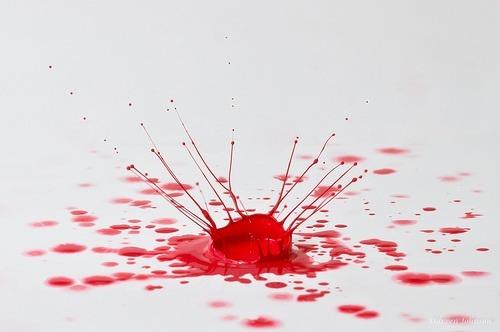 C mo quitar manchas de sangre de un sill n o alfombra for Como quitar las manchas del piso del bano