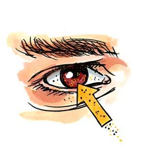 acido-borico-contra-las-cucarachas-ojos