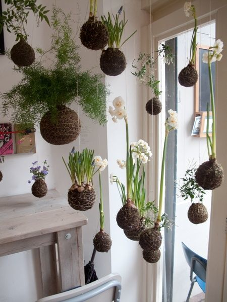 como-hacer-kokedamas-jardin-interior