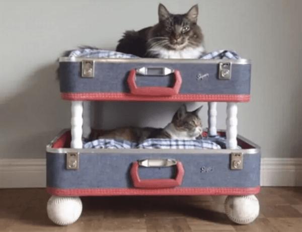 Ideas para reciclar - Reciclar ropa, botellas y envases maletas gatos