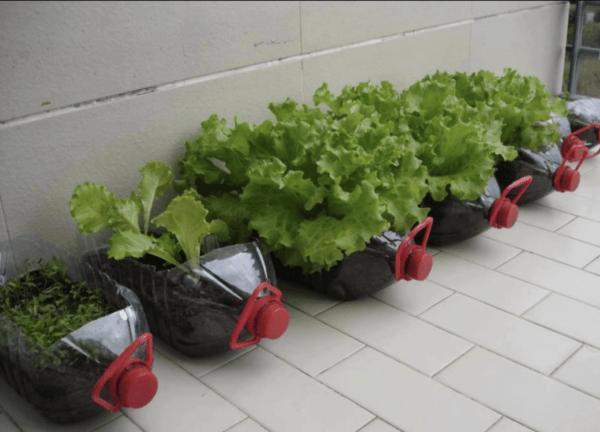 Ideas para reciclar - Reciclar ropa, botellas y envases macetas