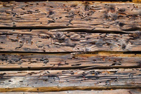 Los mejores consejos para conservar la madera