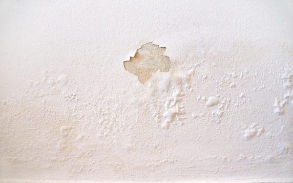 Como hacer un deshumidificador casero paso a paso pared