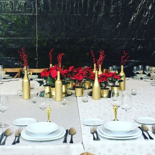 Centro para mesa en Navidad con flores de pascua y botellas doradas