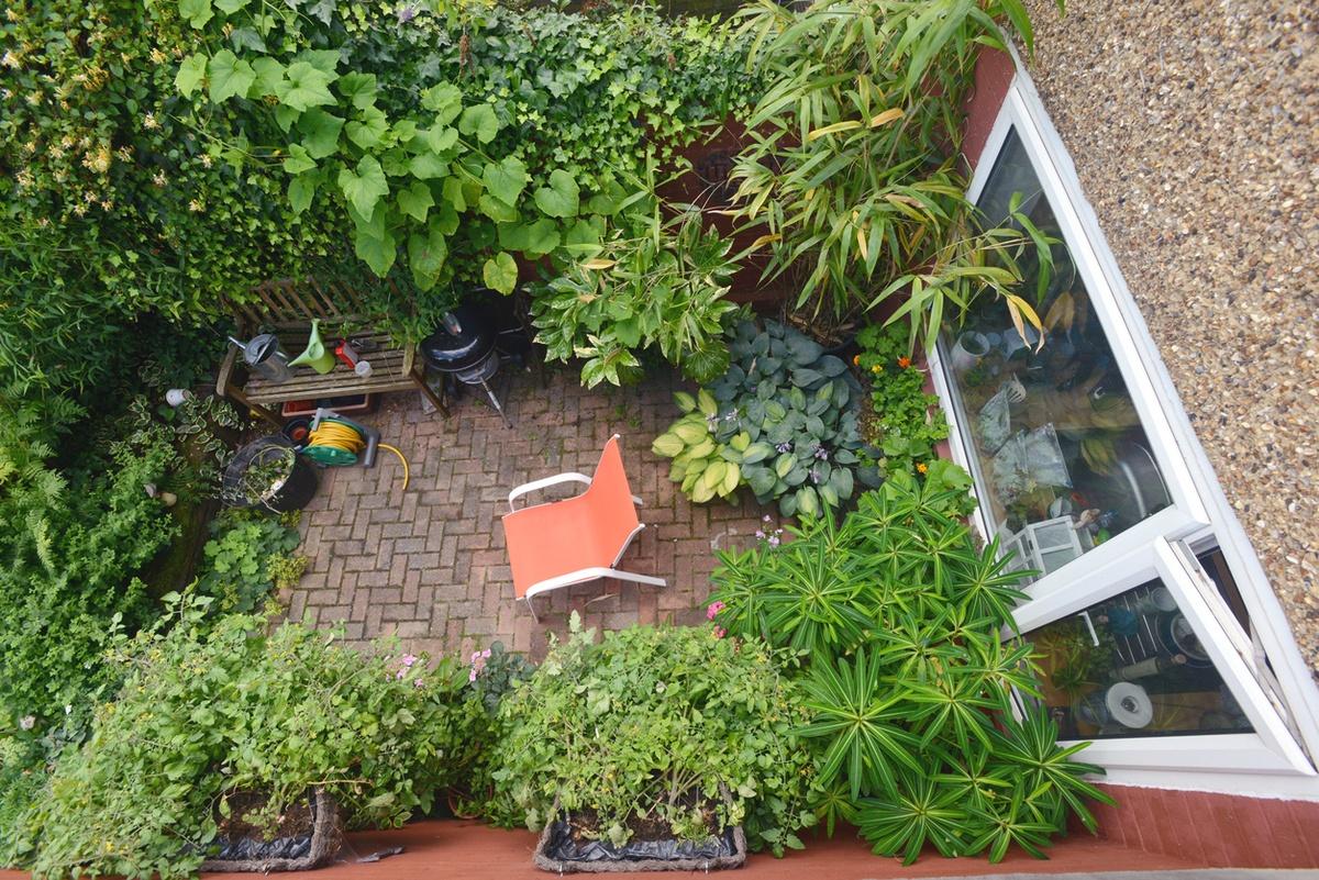 Mejores trucos para jardin pequeno parezca grande FOTOS plantas