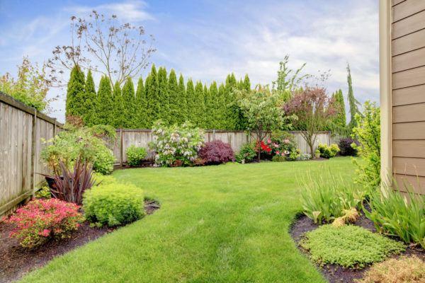Mejores trucos para jardin pequeno parezca grande utiliza plantas prudencia
