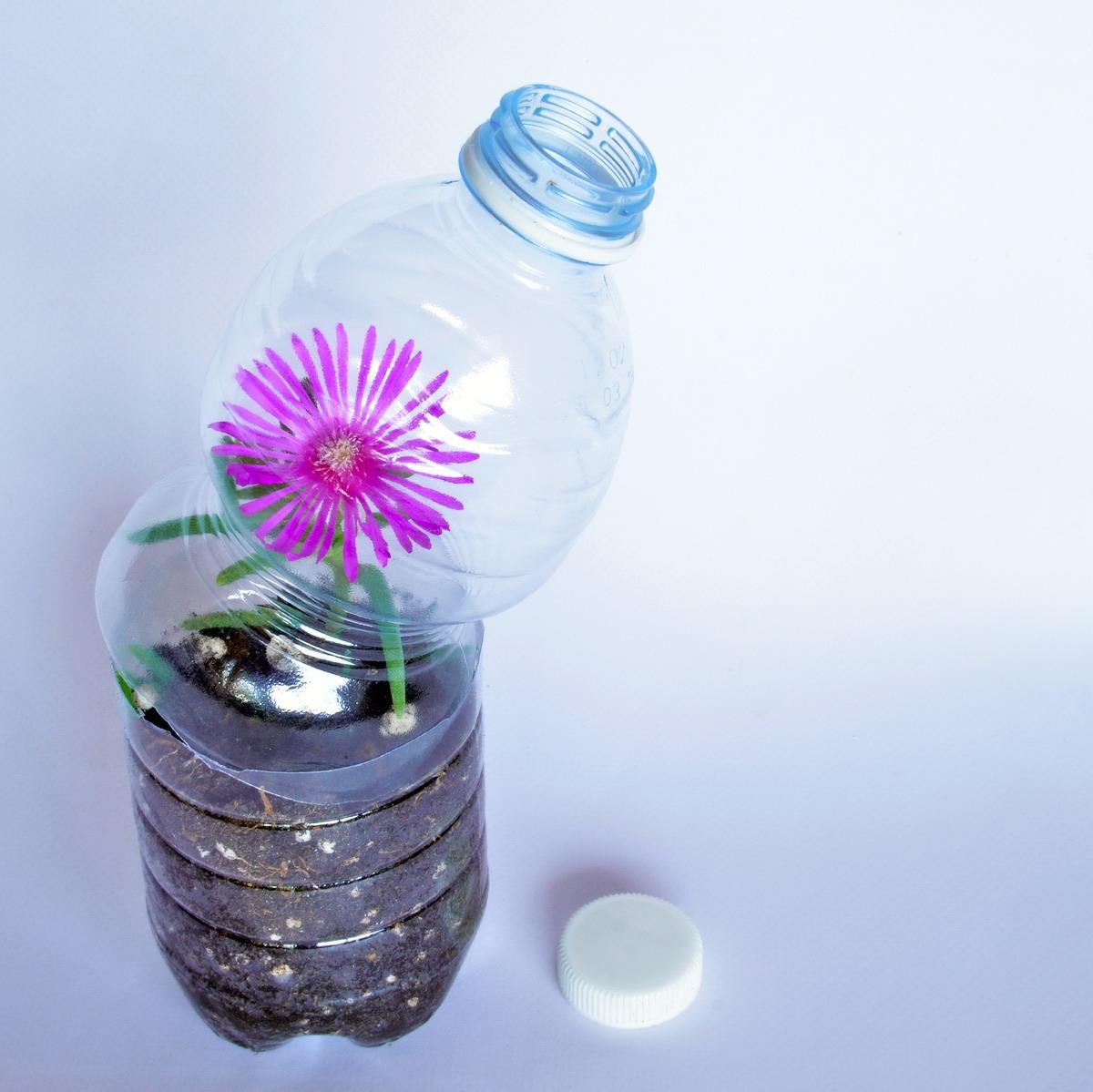 Ideas para hacer macetas con garrafas de agua botella