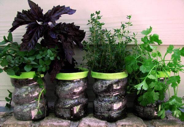 Ideas para hacer macetas con garrafas de agua decorada verde