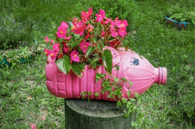 Ideas para hacer macetas con garrafas de agua garrafa color rosa