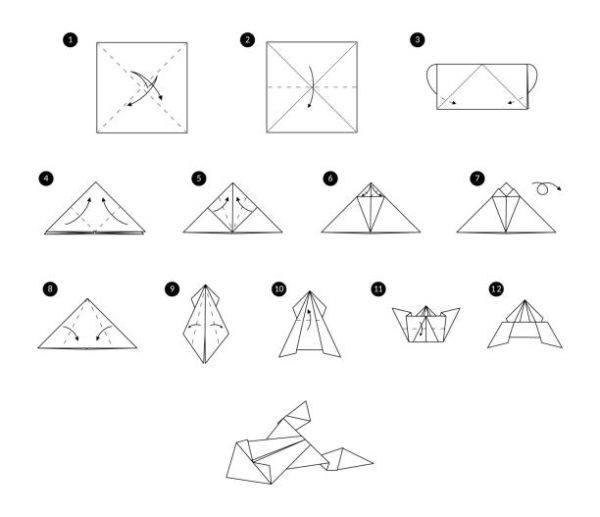 Las mejores ideas de origami para principiantes animales rana